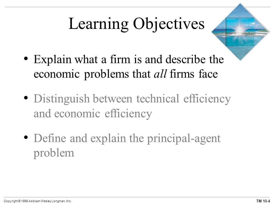 7 Main Objectives of a Business Firm