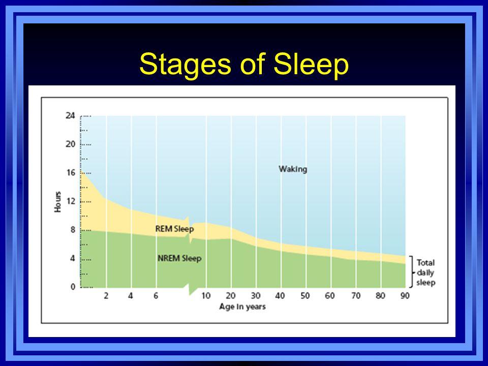 Consciousness: Sleep, Dreams, Hypnosis, and Drugs - ppt ... | 960 x 720 jpeg 63kB