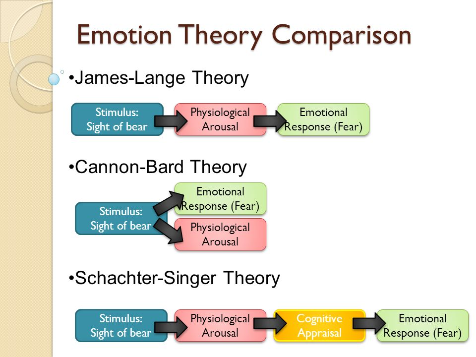 critic of schachter singer emotion theory Thus, cognitive and biological factors interact to produce an emotional response to an event therefore a bidirectional relationship exists between cognitive and biological factors in emotion introduce first theory - le doux.