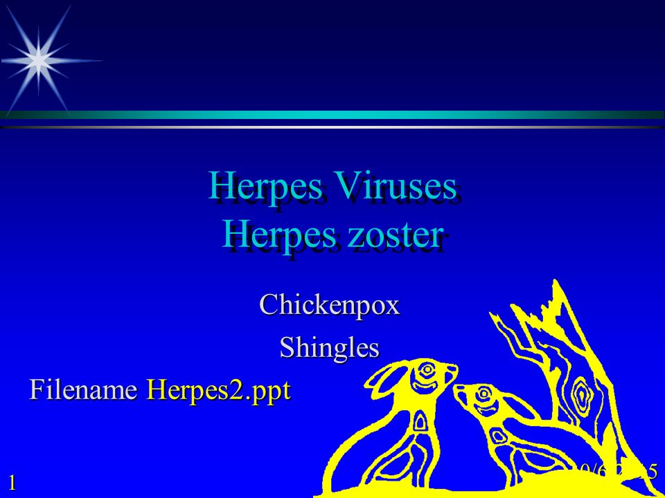 Ppt introduction to herpes viruses powerpoint presentation id.