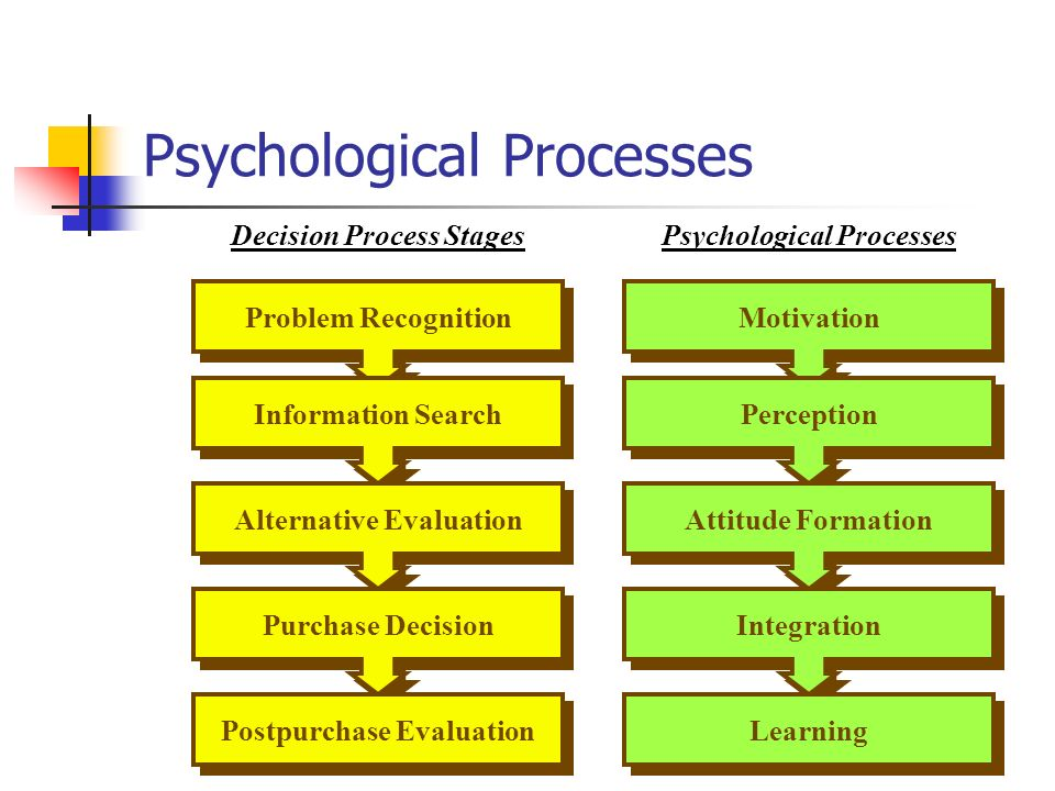 psychological processes motivation perception learning and memory Perception is a psychological variable involved in the purchase decision process that is known to influence consumer behavior other variables included in this consumer process include: motivation, learning, attitude, personality, and lifestyle.