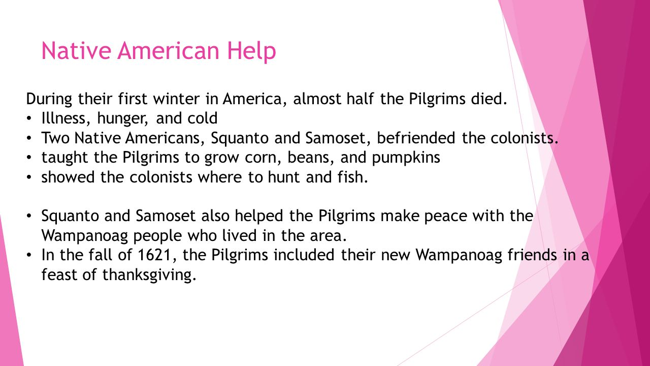 Native American Help During their first winter in America, almost half the Pilgrims died. Illness, hunger, and cold.