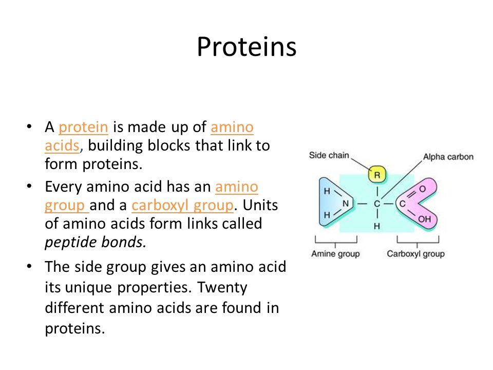 Biochemistry. - ppt video online download