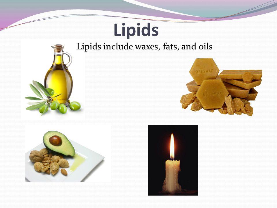 lipids ppt download