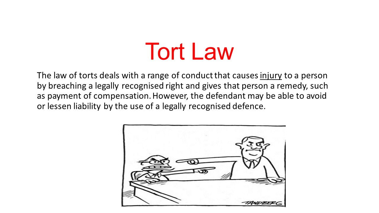 tort law of negligence Whether to reform tort law: a legal analysis negligence in tort law: res ipsa loquitur and negligence per se terms: products liability: a manufacturer's or seller's tort liability for any damages or injuries suffered by a buyer, user or bystander as a result of a defective product economic loss: a monetary loss such as.