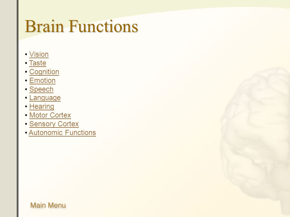 Brain Functions Vision Taste Cognition Emotion Speech Language Hearing