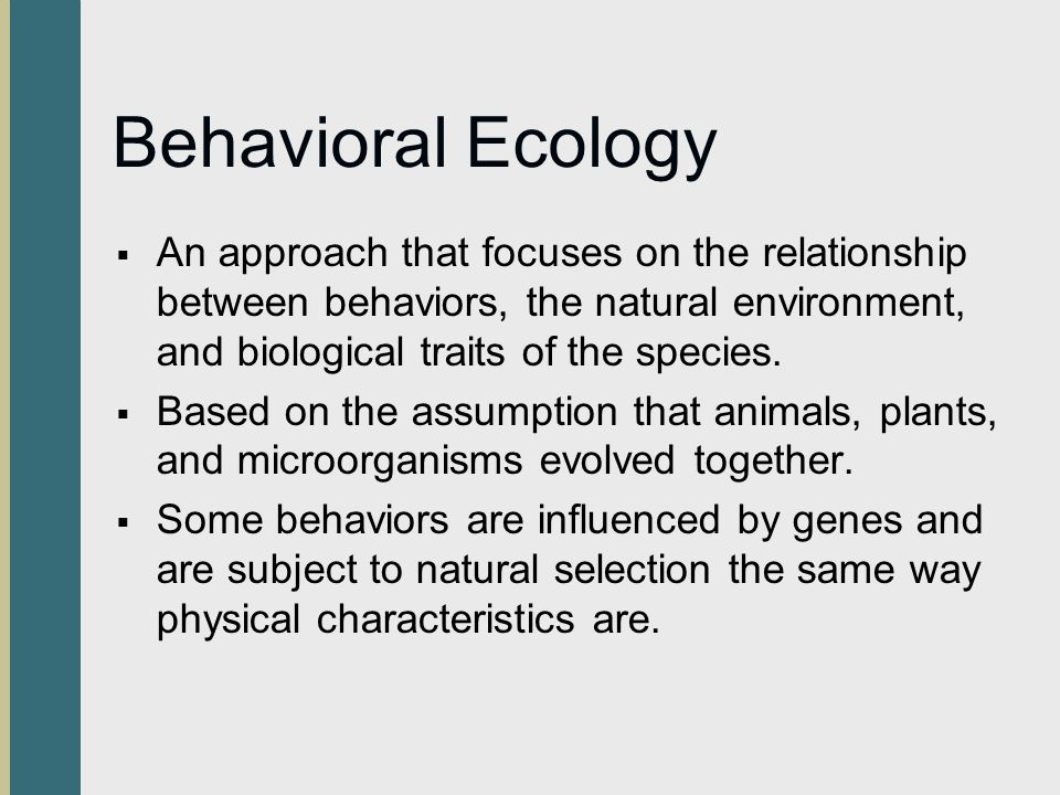 characteristics of biologically triggered behaviour Reinforcement ofbabbling and the shaping ofvocal behaviour account for the very  first  none ofthe learner's output can be explained in terms ofthe characteristics   works only as a trigger ofthe innate mental processes that is responsible for.