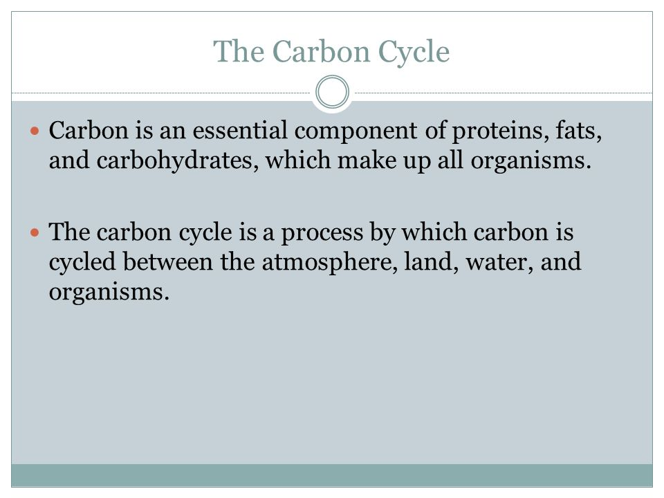 The Carbon Cycle Carbon is an essential component of proteins, fats, and carbohydrates, which make up all organisms.