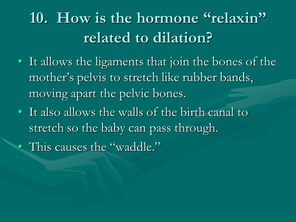 10. How is the hormone relaxin related to dilation