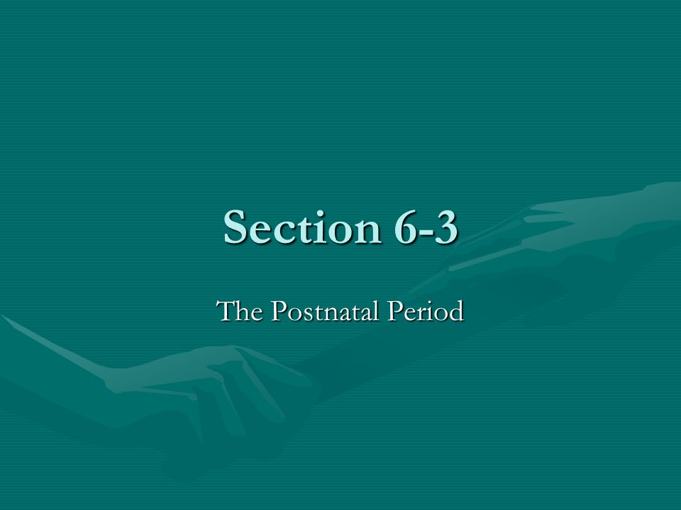 Section 6-3 The Postnatal Period