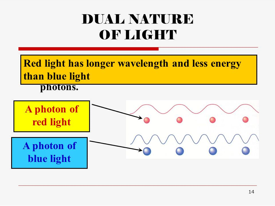 dual nature of light This lesson is the outline for a speech that i gave many years ago for some middle school teachers who wanted some background on the dual nature of light and matter.