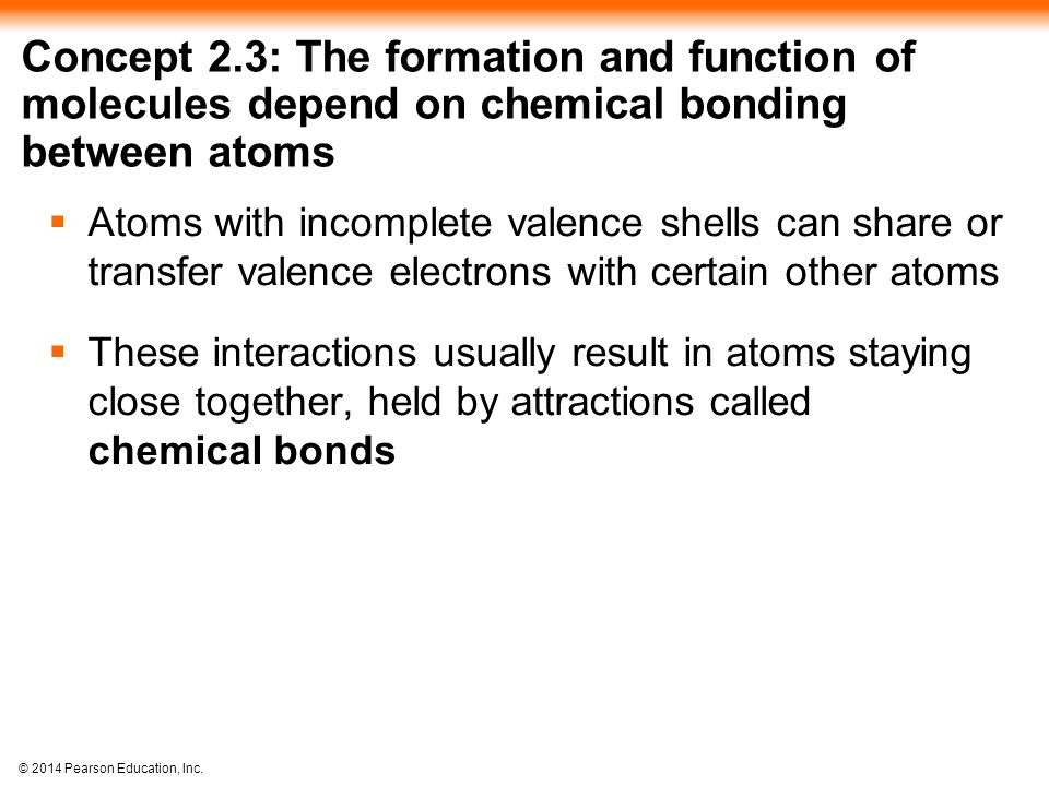 Concept 2.3: The formation and function of molecules depend on chemical bonding between atoms