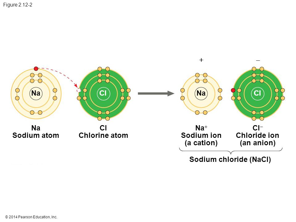 Na+ Sodium ion (a cation) Cl- Chloride ion (an anion)
