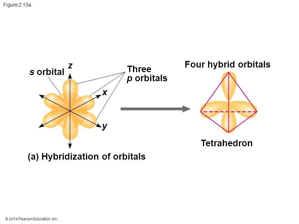 (a) Hybridization of orbitals