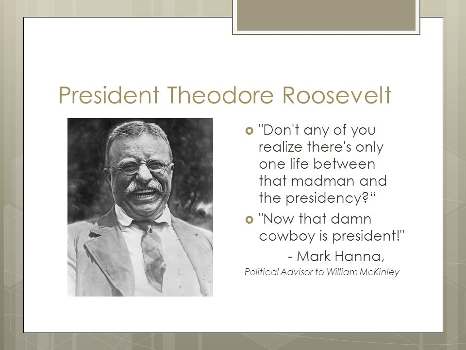 "an understanding of theodore roosevelts philosophy Evolution of the presidency: theodore roosevelt to distribute the handout ""understanding the powers of the pbsorg/the-roosevelts • theodore roosevelt."