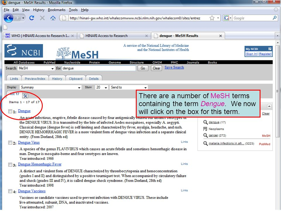 Dengue 2 There are a number of MeSH terms containing the term Dengue. We now will click on the box for this term.