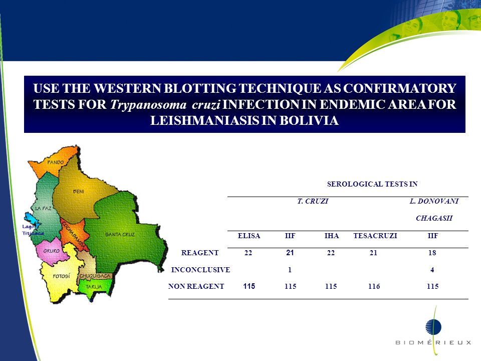 USE THE WESTERN BLOTTING TECHNIQUE AS CONFIRMATORY TESTS FOR Trypanosoma cruzi INFECTION IN ENDEMIC AREA FOR LEISHMANIASIS IN BOLIVIA