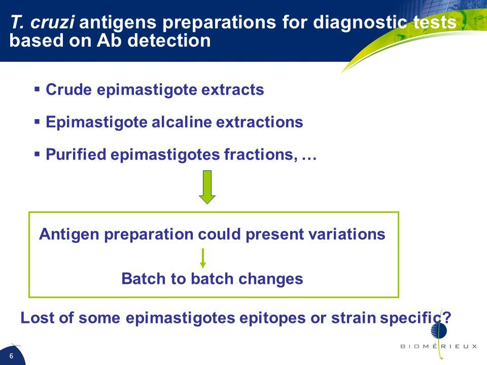 T. cruzi antigens preparations for diagnostic tests based on Ab detection