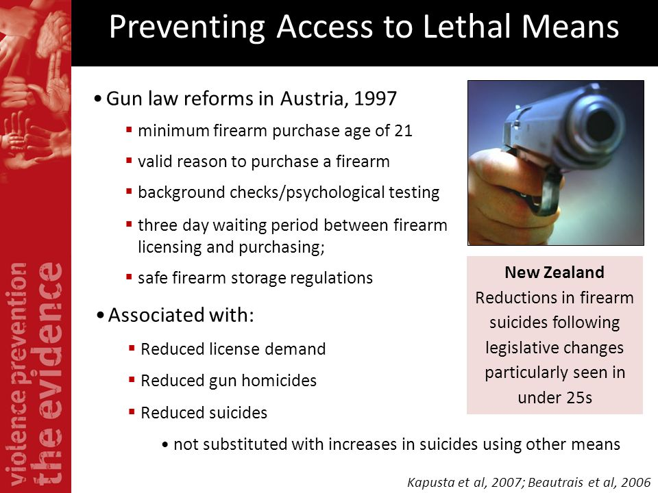 Preventing Access to Lethal Means