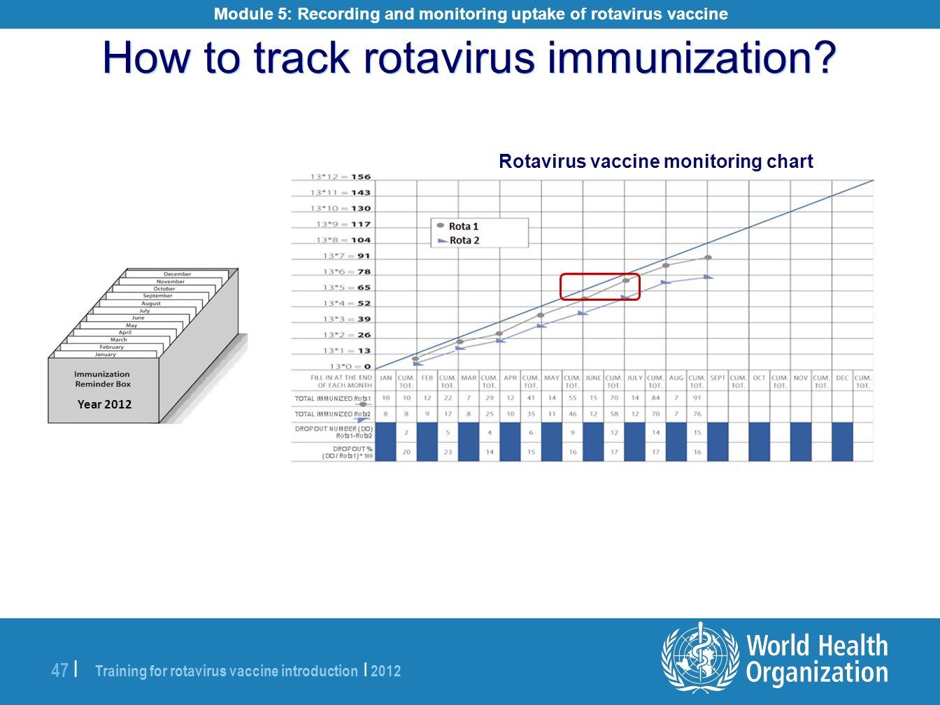 How to track rotavirus immunization