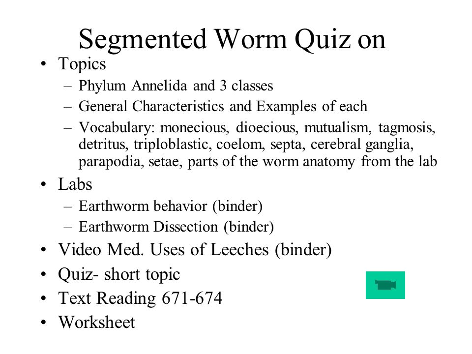 lab questions phylum annelida 2 Review annelids in 22 questions and answers written by biology teachers the key innovation found in the species of the phylum annelida is the coelom.