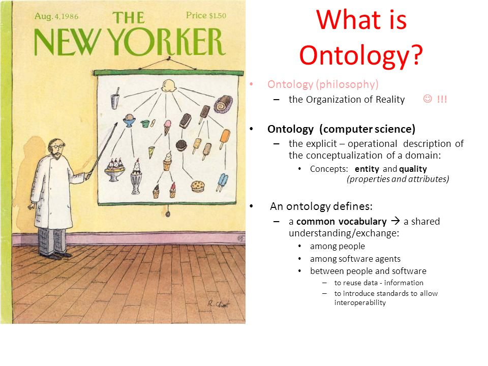 What is Ontology Ontology (philosophy) Ontology (computer science)
