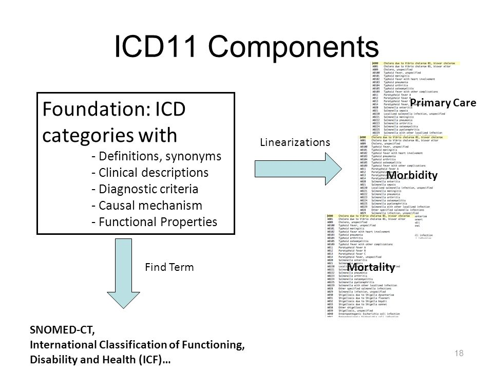 ICD11 Components Foundation: ICD categories with