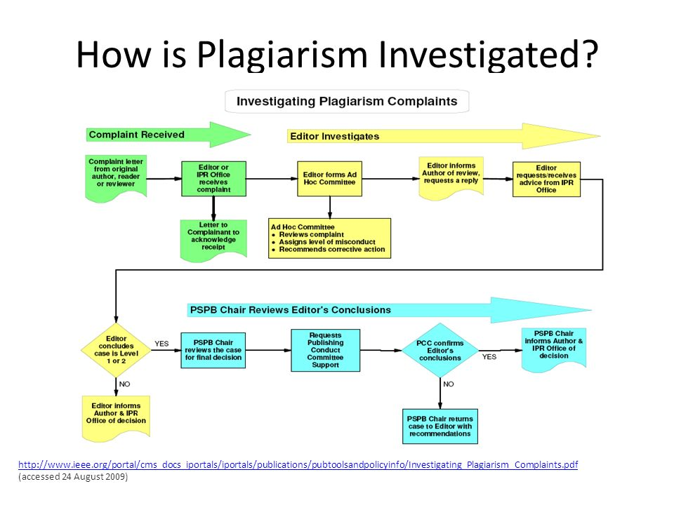 How is Plagiarism Investigated