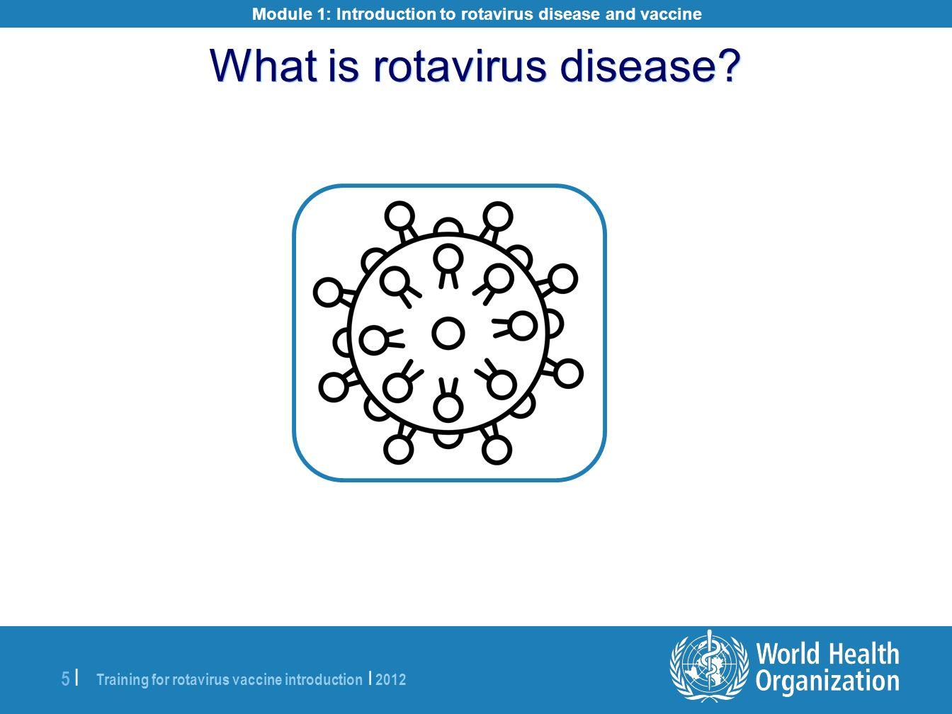 What is rotavirus disease