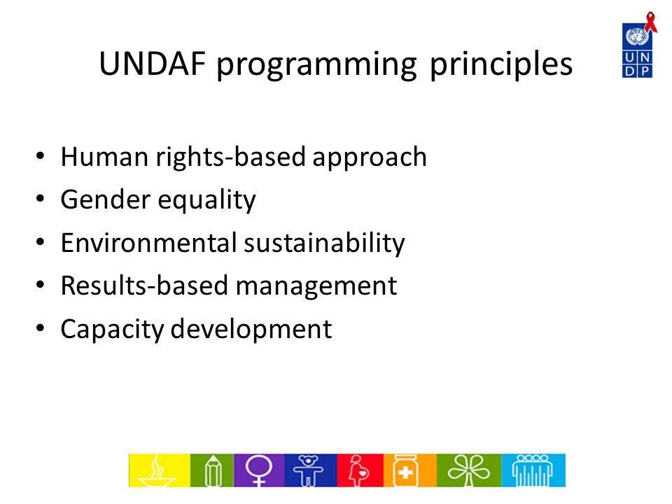 UNDAF programming principles
