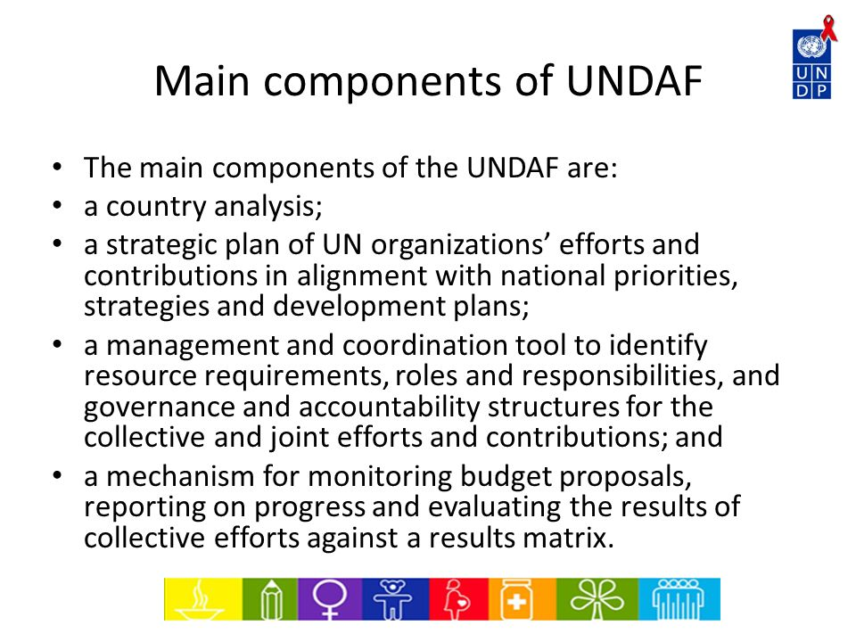 Main components of UNDAF