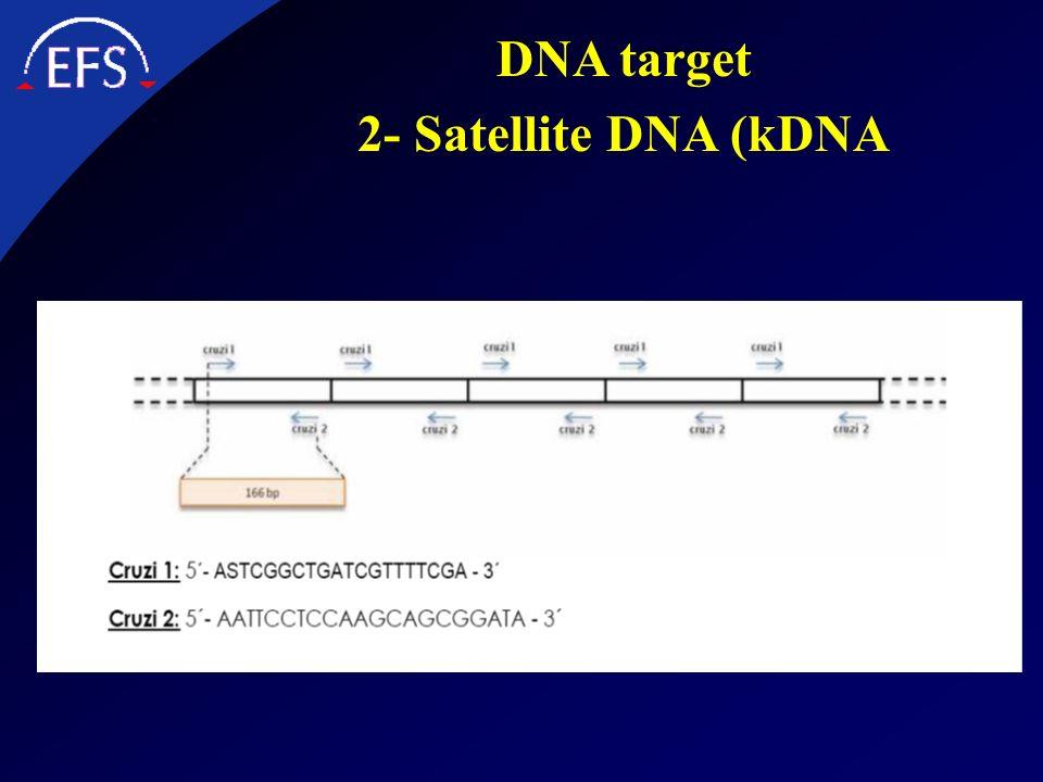 DNA target 2- Satellite DNA (kDNA