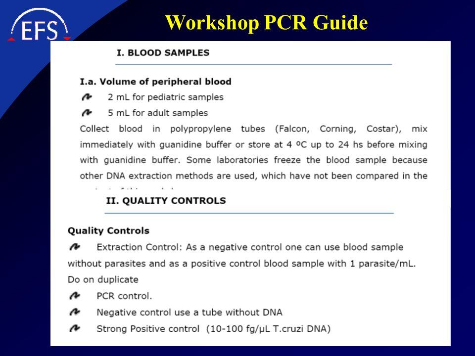 Workshop PCR Guide d