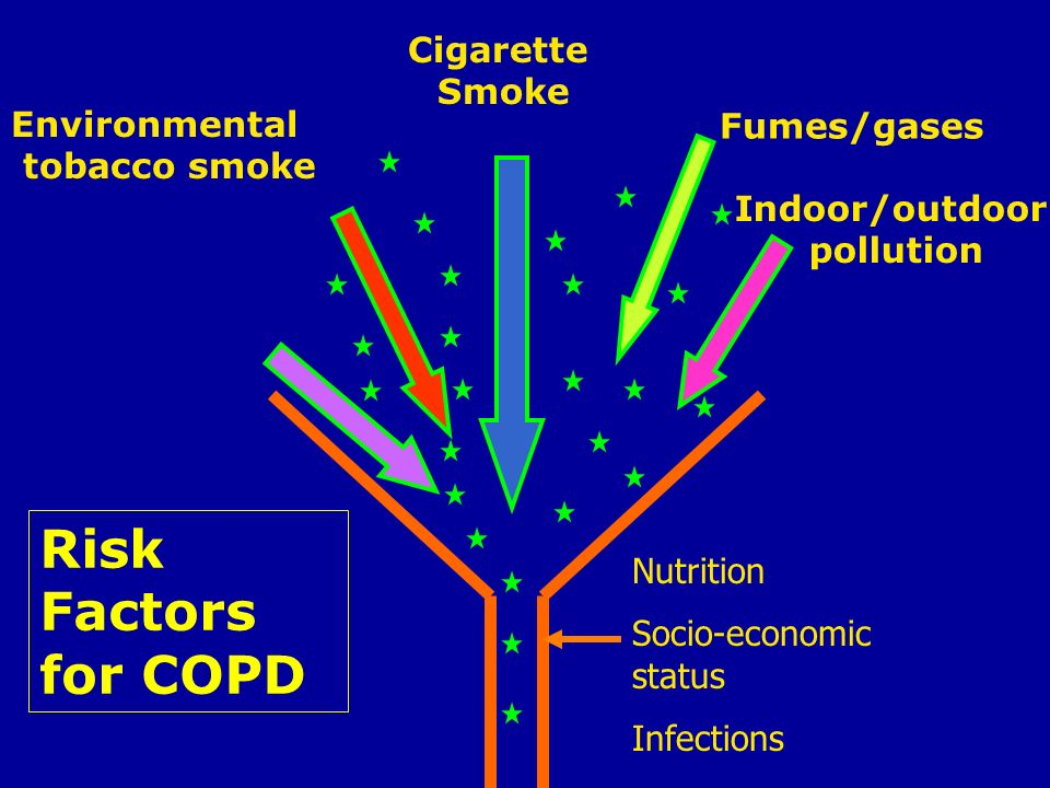 Risk Factors for COPD Occupational dusts Cigarette Smoke Environmental