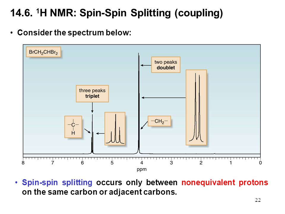 how to download nmr spin work