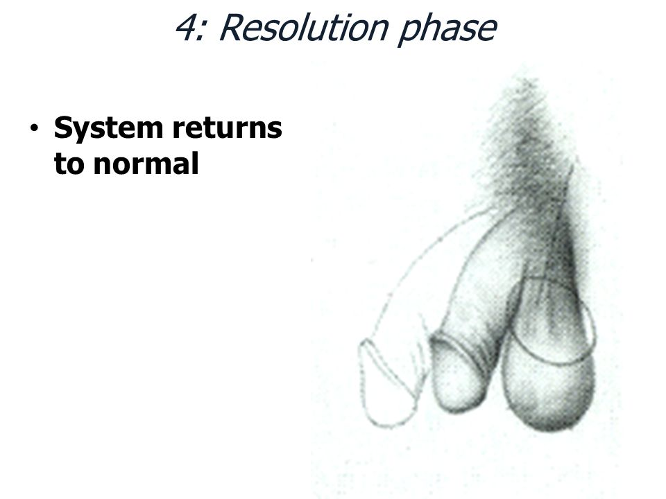 4: Resolution phase System returns to normal