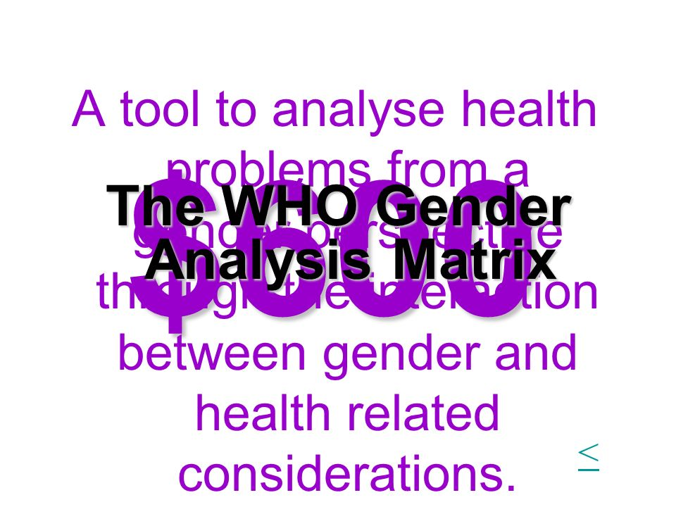 The WHO Gender Analysis Matrix