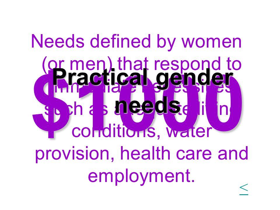 Practical gender needs