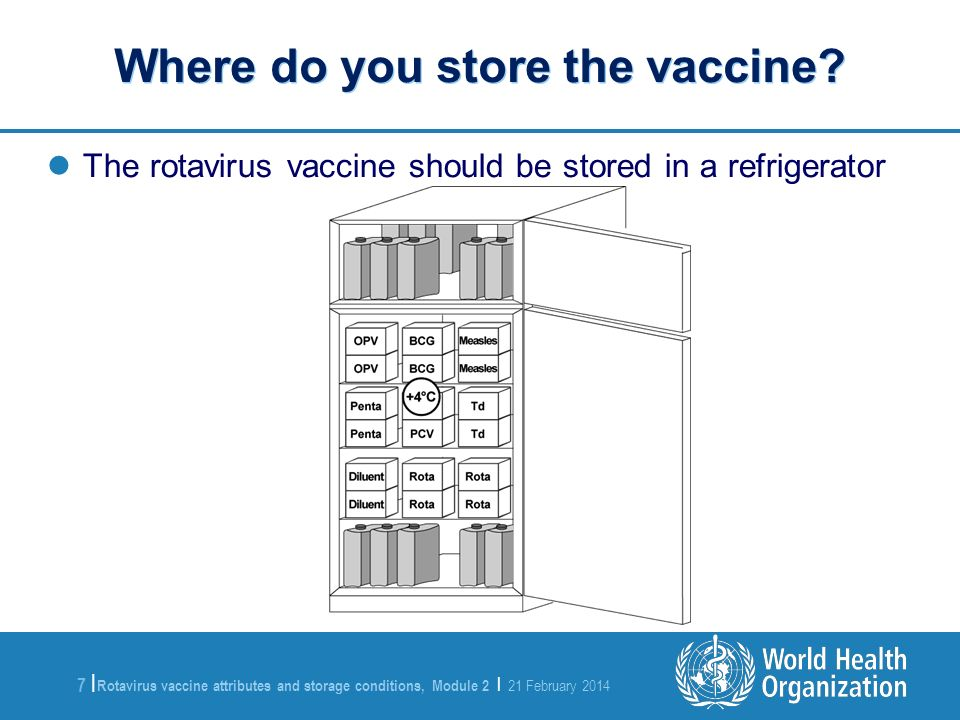 Where do you store the vaccine