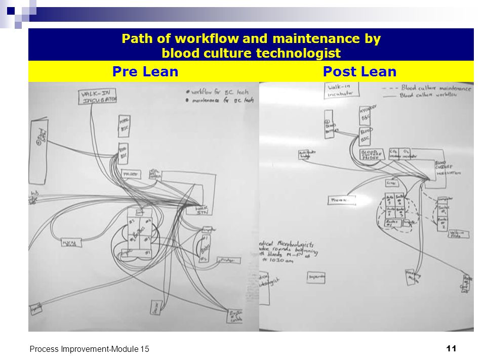 Path of workflow and maintenance by blood culture technologist