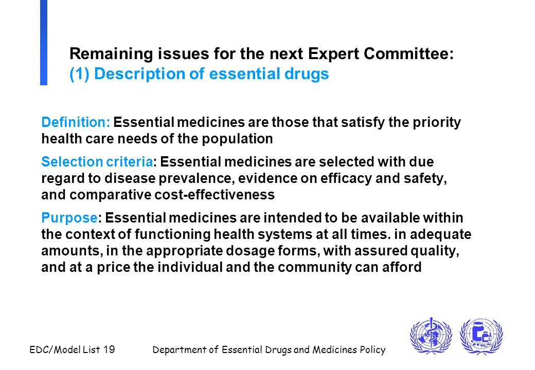 Remaining issues for the next Expert Committee: (1) Description of essential drugs