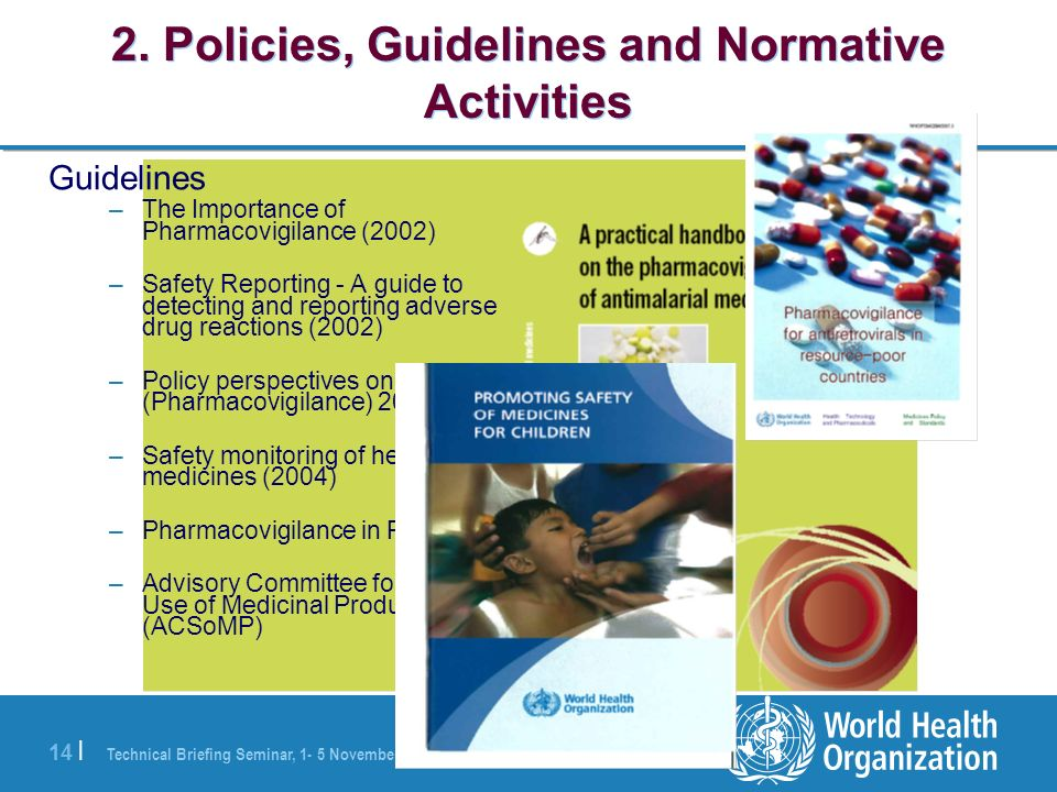 2. Policies, Guidelines and Normative Activities