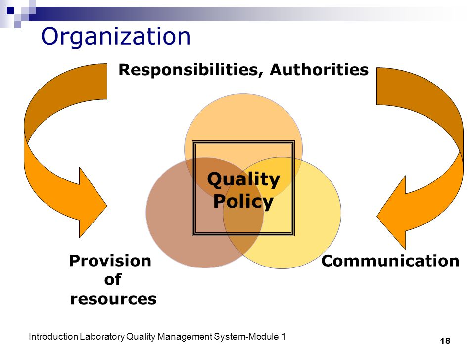 Organization Quality Policy
