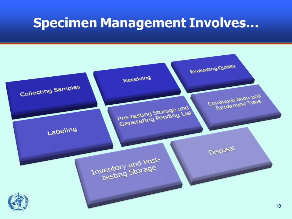 Specimen Management Involves…