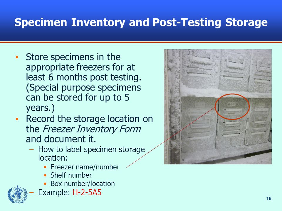 Specimen Inventory and Post-Testing Storage