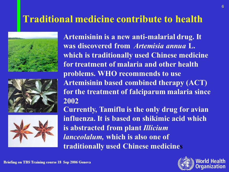 Traditional medicine contribute to health