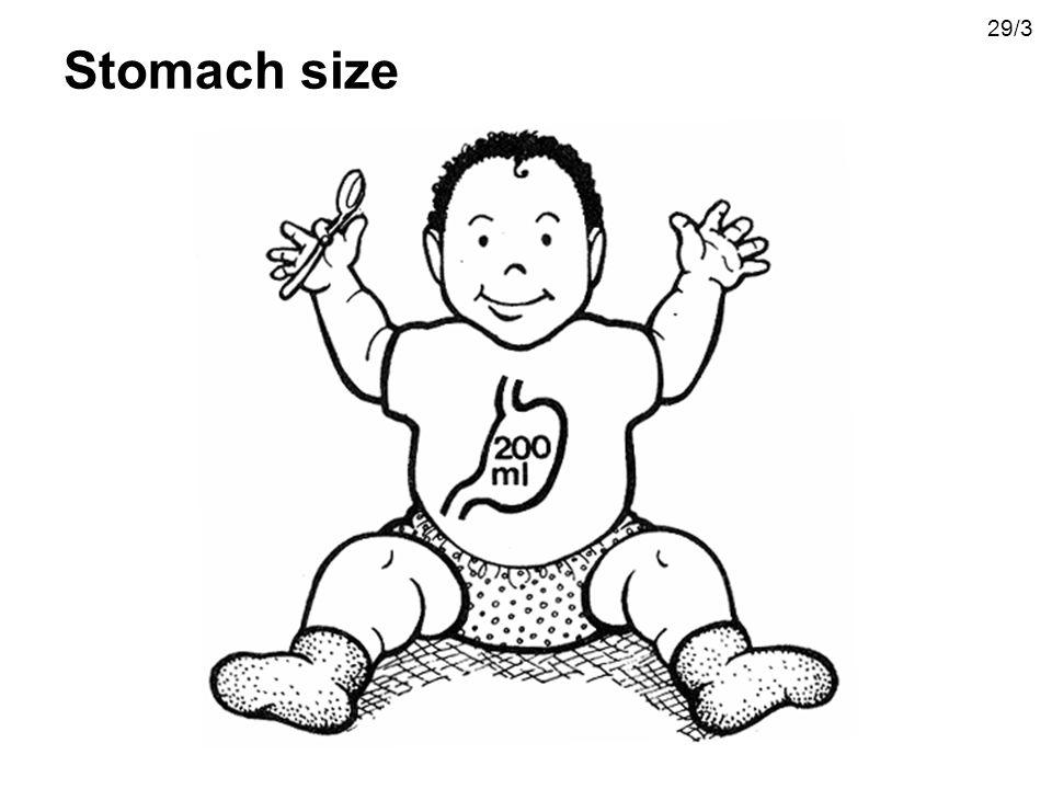 29/3 Stomach size
