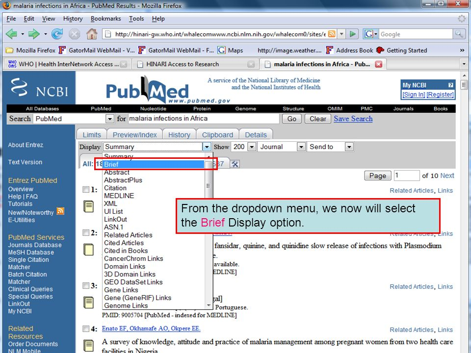 Brief format From the dropdown menu, we now will select the Brief Display option.