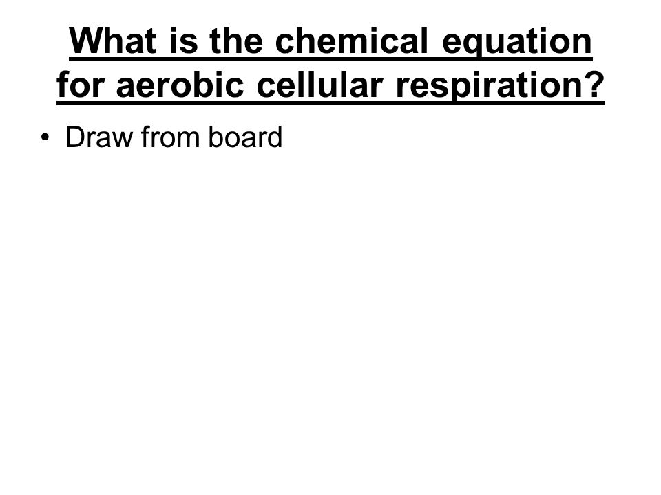 What is the chemical equation for aerobic cellular respiration