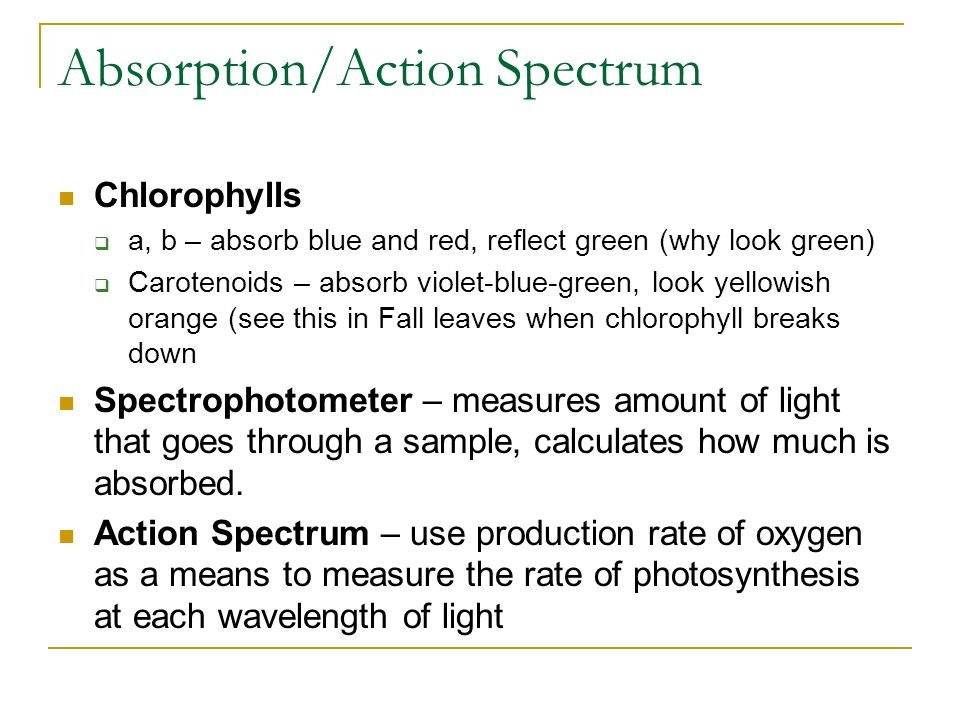measuring the rate of photosynthesis using The ci-340 handheld photosynthesis system is a portable, single-handed tool that measures photosynthesis, respiration, transpiration, stomatal conductance, par and internal co 2 light-weight and durable, the ci-340 was designed for field use.
